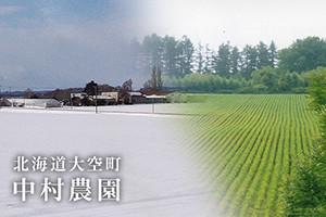 北海道大空町 中村農園