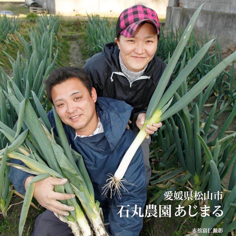 愛媛県松山市石丸さんの農園「あじまる」