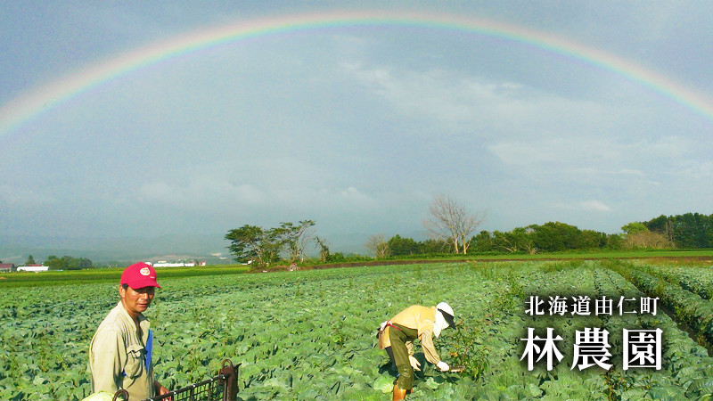 北海道由仁町 林農園