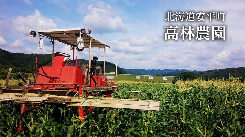 北海道安平町 高林農園