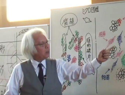 ヤマカワプログラム講演動画2017が閲覧できるようになりました